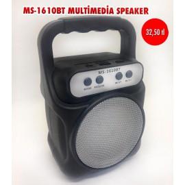 MS-1610BT MULTİMEDİA SPEAKER