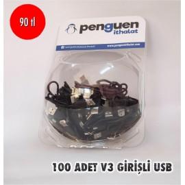 100 ADET FANUS V3 GİRİŞLİ USB