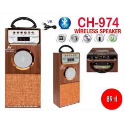 CH-974 WİRELESS SPEAKER