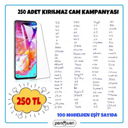 250 ADET KIRILMAZ CAM KAMPANYASI