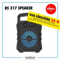 RS 317 SPEAKER