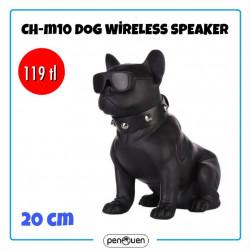 CH-M10 WİRELESS DOG SPEAKER